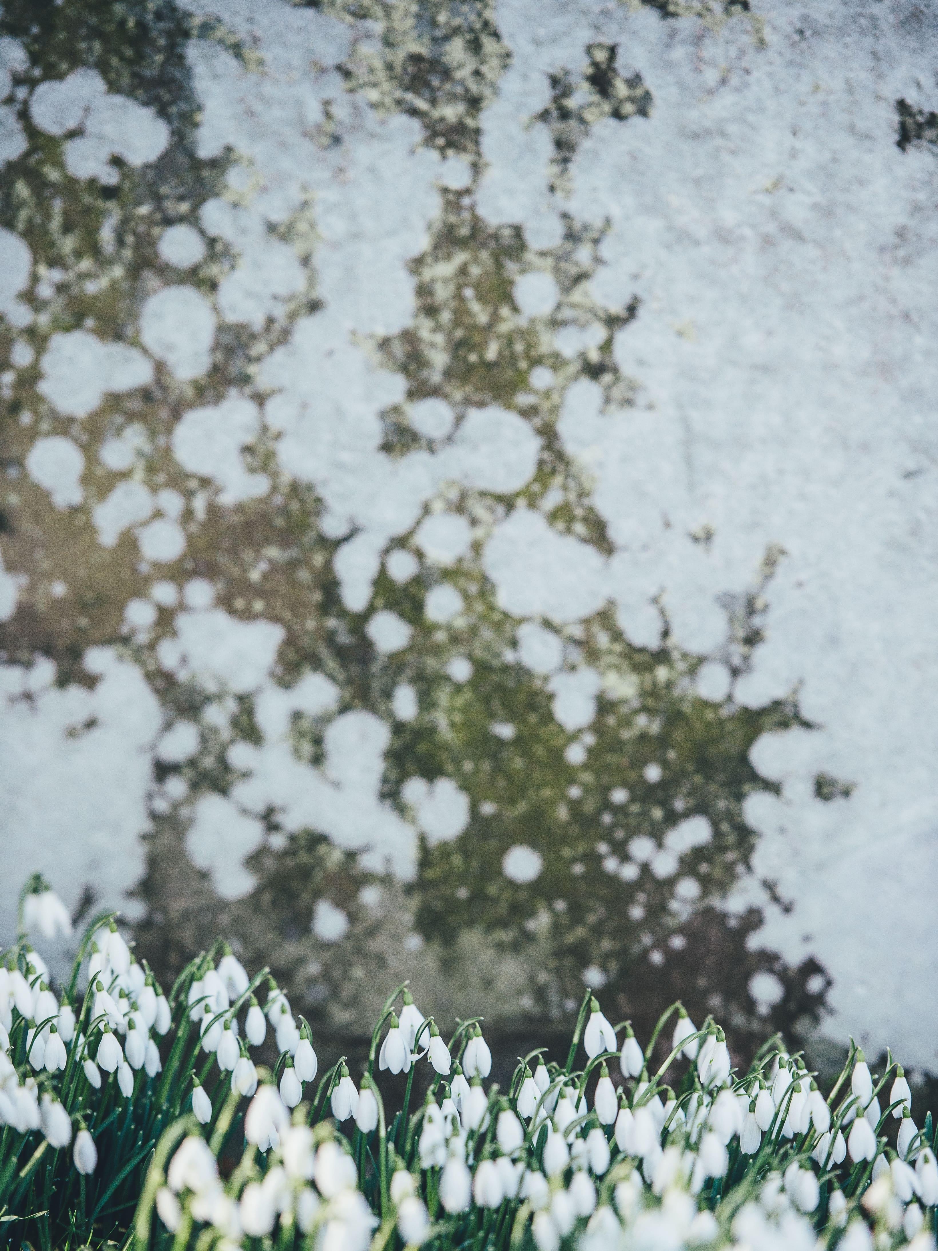 Egy felfrissítő gyógyüdülés Hajdúszoboszlón nagyszerűen felvezetheti tavaszt! Mutatom, hogyan.