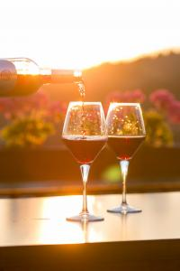 A páros romantika Hajdúszoboszlón igazi élmény - ezen a hétvégén kimaxolhatod.