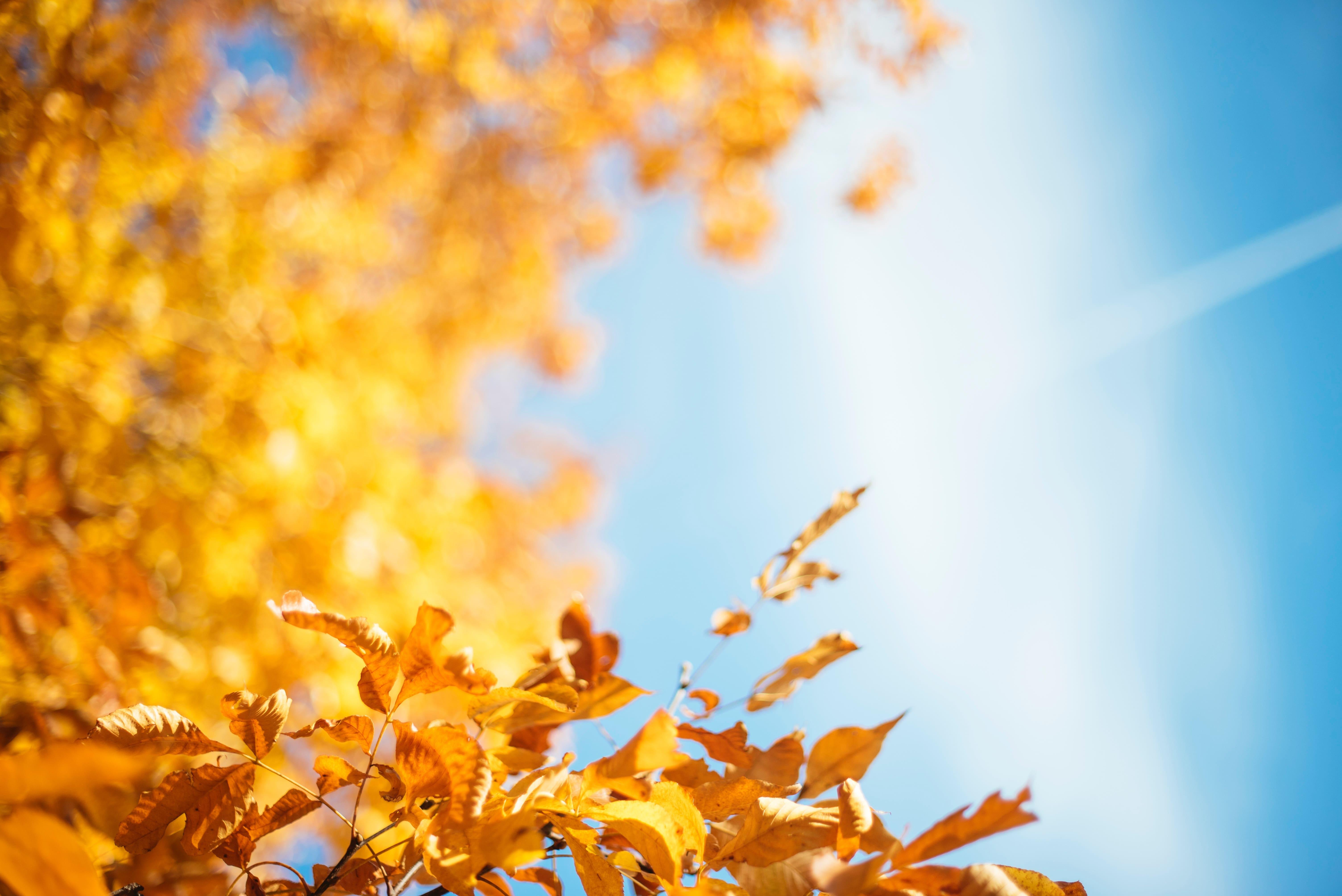 Az őszi üdülés nyugdíjasoknak Hajdúszoboszlón nem egyenlő a gyógyfürdőzéssel. Ennél sokkal több jár Neked!