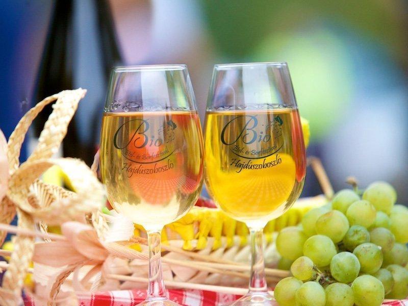 A Bioétel- és Borfesztivál Hjadúszoboszlón már egy hagyományos, bejáratott rendezvény. De minden évben más! Idén is.